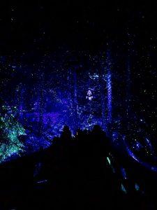 eventos de navidad en canada vallea lumina gsi